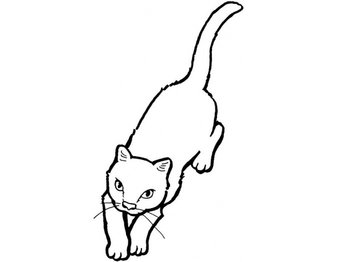 Cat Coloring Page 6