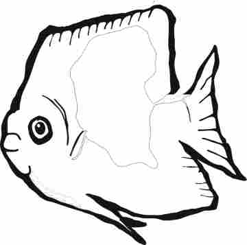 Fish Coloring Page 2