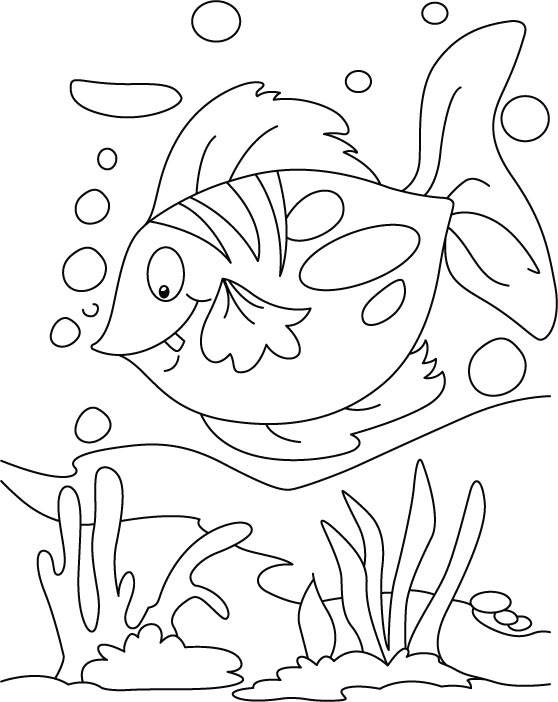 Fish Coloring Page 9