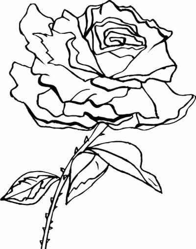 Flower Coloring Page 2