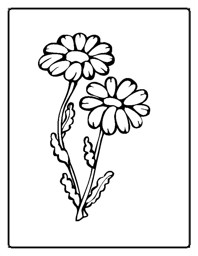 Flower Coloring Page 6