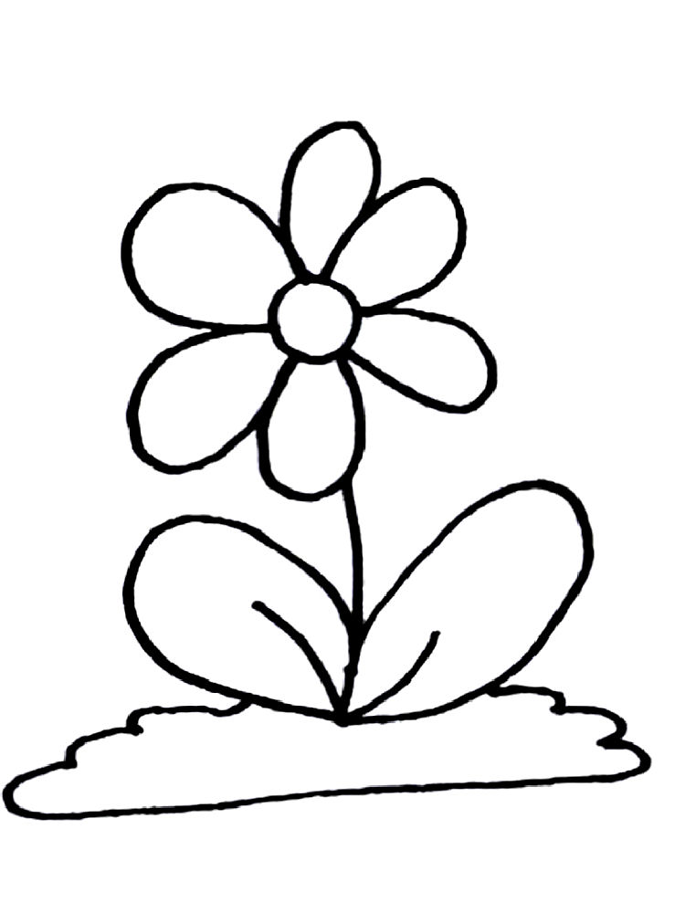 Flower Coloring Page 7