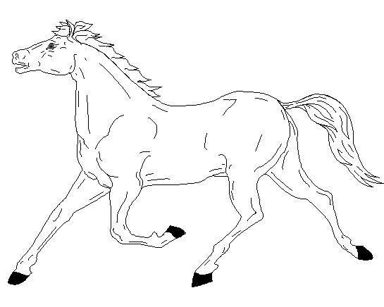 Horse Coloring Page 9