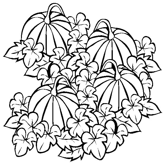 Pumpkin Coloring Page 5